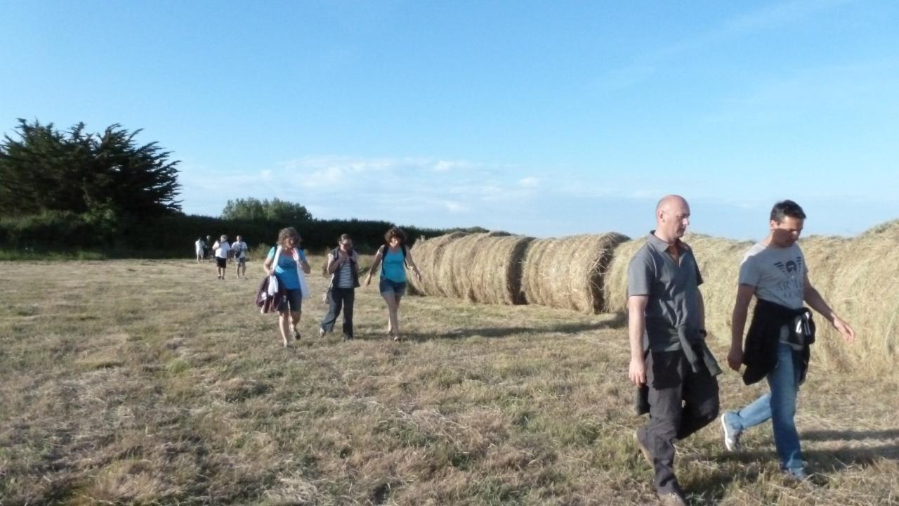 balade dans les champs av la crêperie